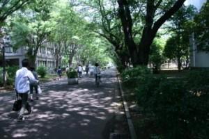 photo_090629